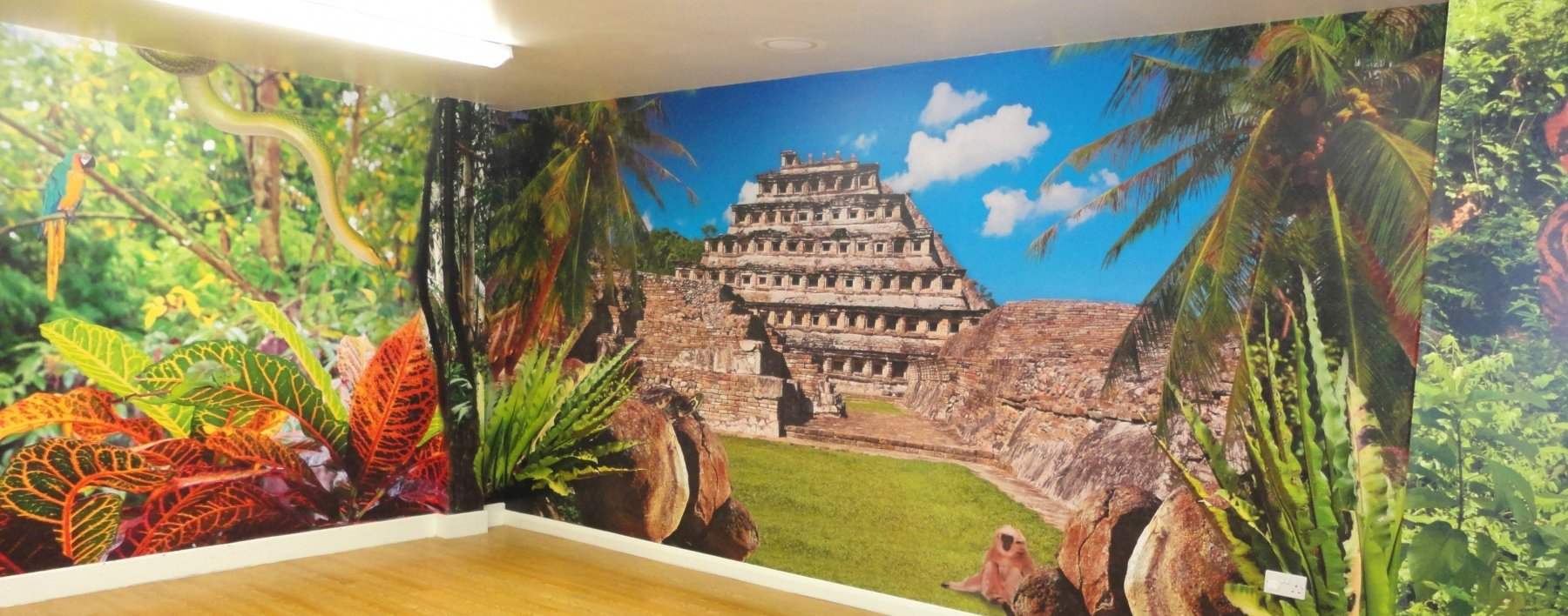 Aztec Soft Play interior wall mural by Astaura Corporate Interiors